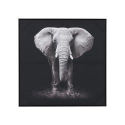 Fotografie Înrămată Elefant Negru - Alb