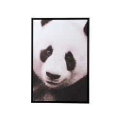Fotografie Înrămată Panda Negru - Alb