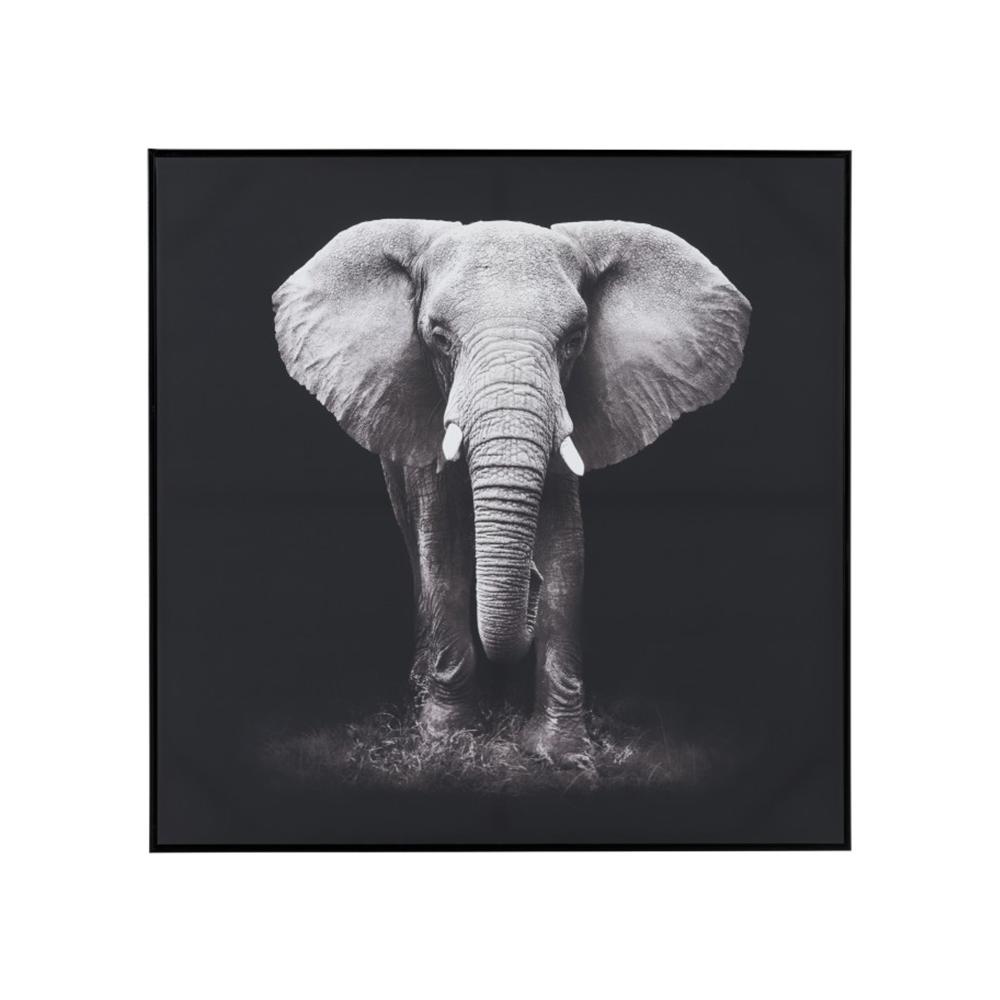 Fotografie inramata Elefant J-LINE