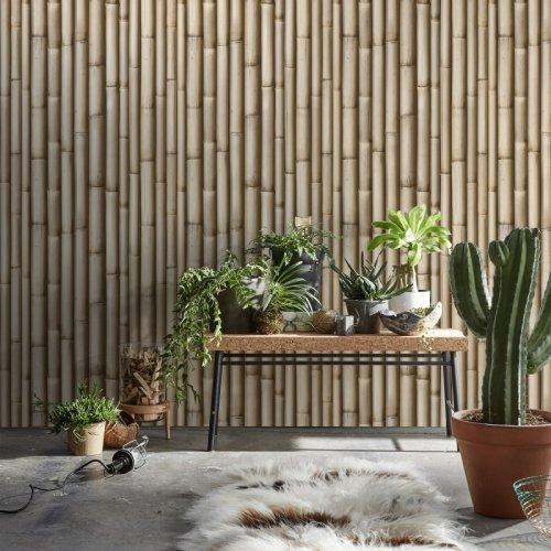 Tapet Bambus vechi KOZIEL